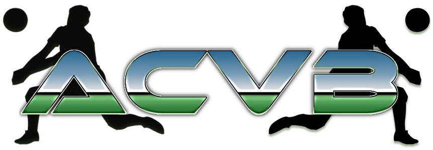 Association Castelneuvienne de Volley-Ball