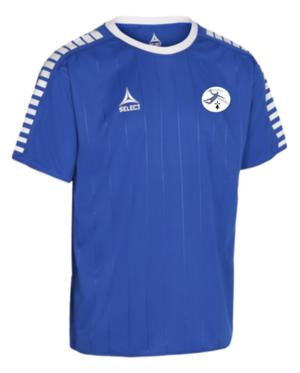 MAILLOT MANCHE COURTE ARGENTINA-img-108010